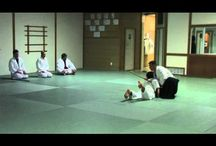 Aikido Blueprint Videos / Aikido videos by Blaine Feyen and Instructors of The Aikido Center / by The Aikido Center