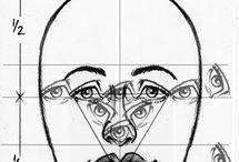 Emberi arc arányai