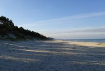 Baltic beach / Wonderful views from seashore of Baltic sea.