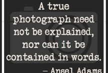 I love everything Photography