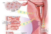 Gynaecology - Ginecología / Gynaecology is the medical practice dealing with the health of the female reproductive system (vagina, uterus and ovaries) and the breasts. La Ginecología es la especialidad médica que trata las enfermedades del sistema reproductor femenino (útero, vagina y ovarios) y los pechos.