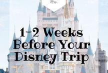 Disney Finally!!!