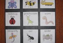 Kinder literacy