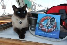 Bailey Boat Cat / Me and my adventures afloat!