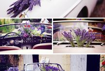 Wedding - Voiture