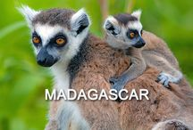 - Memorable Madagascar - / Madagascar is 100% on our the bucket list.