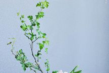 Ikebana / Take a look at my YouTube channel for my series of 'How to' flower arranging tutorials, practical ideas and tips to create beautiful DIY flower arrangements and crafts at home