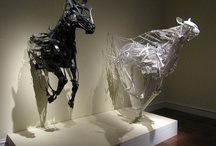 Horses / by Toni Gaisford