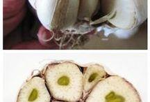 Obst - und Gemüsegarten