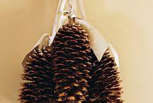 Pinecone Deco  & Crafts