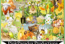 Pink Paradox Productions