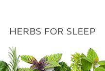 Herbs for Sleep / Herbs to help with sleep, insomnia and relaxing so you can fall asleep faster