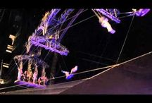FLYING TRAPEZE VIDEOS