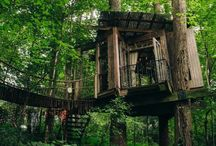 Tree Houses & wonderful tents