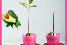 Grow food / by Jolena Williams