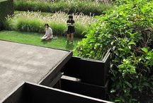 Garden / Plaza