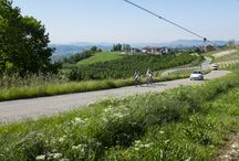Langhe & Roero on bike!!! / Some pics of our cyclists riding through the beatiful hills and landscapes of Langhe and Roero!!!