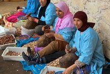 Argan Oil Women-Run Cooperatives