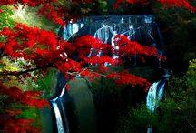 fotos lindas de paisagem