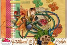 Festival Of Color Scrapbook Collection