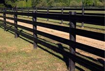 Pasture Fencing for Horses
