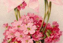 Flores, flores e mais flores!!!! / Flores pintadas, flores  em fitas, decoupage