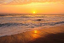 Haiku / La contemplación de la naturaleza despierta nuestros sentimientos más profundos. ¡Atrévete a experimentarlo!