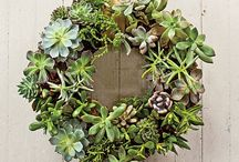 Christmas Decorations / Ideas for Holiday decorating.
