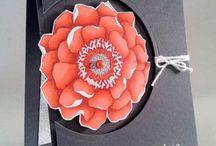 Blended bloom / by Jen Lindsay