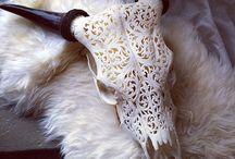 Déco: carved skulls & antlers