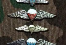 para wings