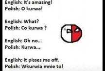 Polish/English