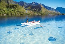 clear water paradise