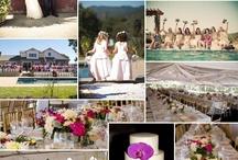 Stacy's Wedding / by Kristen Wilson