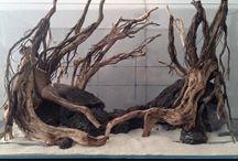 Zbiorniki z korzeniami