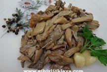 İstiridye Mantarı - Mushroom