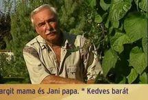 Bakacsi Béla