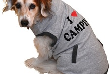 Camping Critters / Your pets enjoy camping just as much as you do! So, it seems only fair that they get to shop for camping gear too! / by Camping World