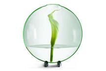NEJ Evropské vázy / Designové váz, které Vám vyrazí dech!