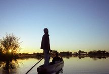 Botswana / by ROW Adventures