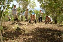 Volunteering in Ecuador / From the Galapagos island to Quito - there are lots of projects and we always need motivated volunteers! http://www.volunteerworklatinamerica.org/volunteer/projects/ecuador.asp
