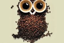 .....coffee owl