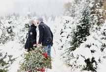 winter. / by Dana Ward