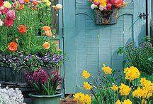 Garden ideas / Creating ambience in the garden.
