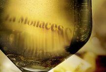La Monacesca / Nell'Alta Valle dell'Esino La Monacesca riprende una tradizione antica per produrre vini eleganti e molto particolari.