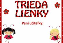 Lienky