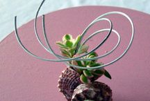 """Floral Designs: Miniature / A Miniature floral design is not to exceed 5"""" in any direction. If the design is oversized, it will be scored down or disqualified. It is important to keep plant material in scale to the design area."""