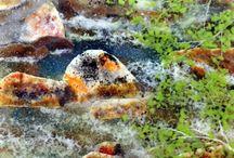 Landscapes (Fused Glass)