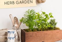 gardening/landscaping / by Lynn Weikel