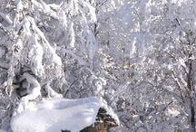 αγαπημενα χειμωνιατικα τοπια